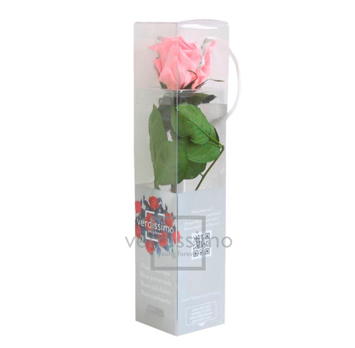 Roos op steel mini 27,5cm Pastel pink