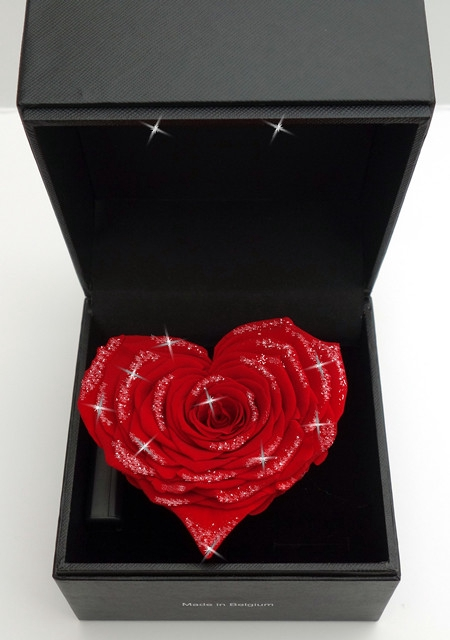 <h4>Diamant hart Giftbox</h4>