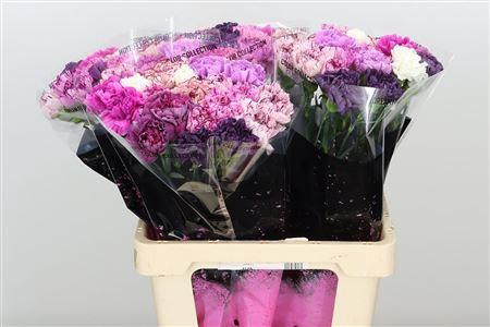 <h4>Di St Mix Lavendel</h4>