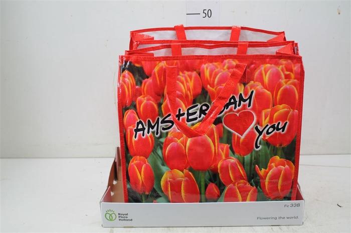 <h4>Bloembol Tulipa In Hengseltas</h4>