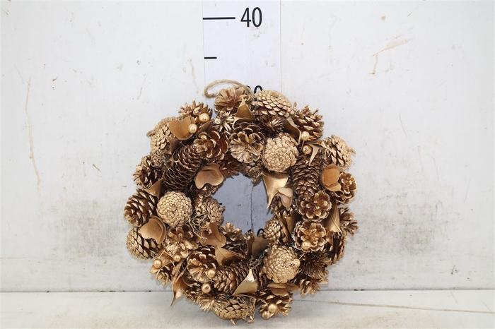 <h4>5322 Wr. Noble Gold Christmas D30 H7 H7d30cm</h4>