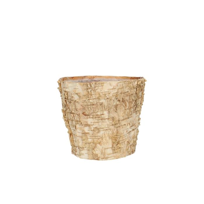 <h4>Hout Berk pot d14*12.5cm</h4>
