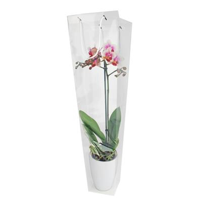 Bag Clear PP 19/12xH47cm transparent