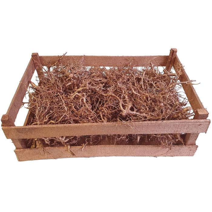 <h4>Bonsai branches in box (60-39-18) Copper</h4>