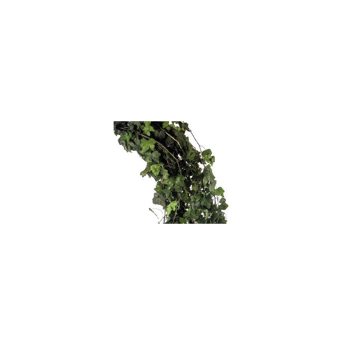 <h4>Hedera Helix mini Green HEP/9103</h4>