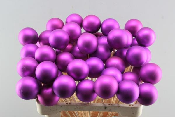 <h4>Droog X-mas Ball Purple Matt</h4>