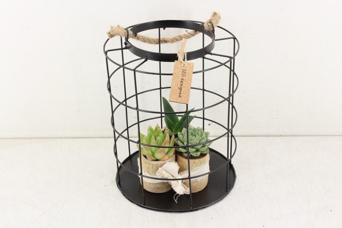 <h4>arr. MB - Gaaskooi XL bamboe pot</h4>