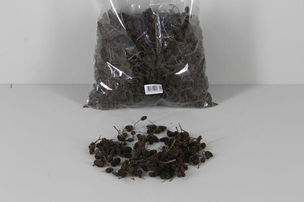 <h4>Alder Cone Natural (bag 0,7kg)</h4>