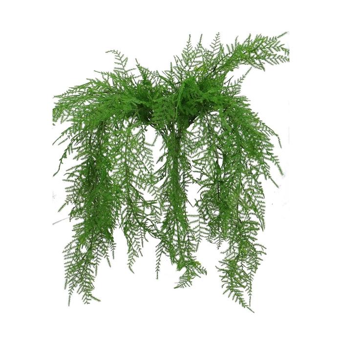 <h4>Silk Asparagus 65cm</h4>