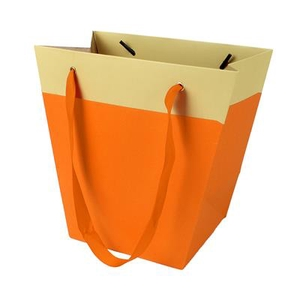 Bag Facile carton 19/12x11xH18cm orange