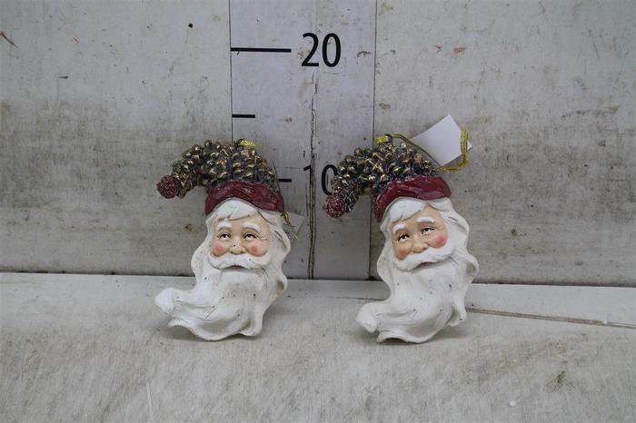 <h4>7162 Hang. Santahead Swingbeard L6.5w7.0</h4>