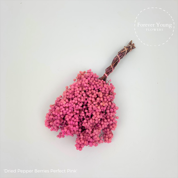 <h4>Dried Pepper Berries Perfect Pink</h4>