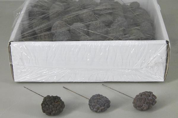 <h4>Atta Fruit On 10cm Wire Box175</h4>