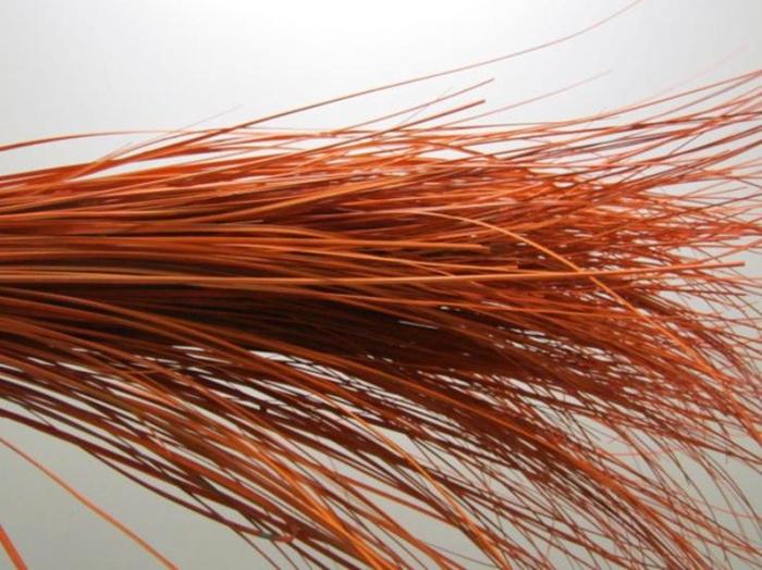 <h4>Beregras Oranje</h4>