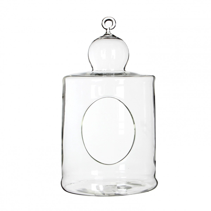 <h4>Glass Cage+hole d12.5*23.5cm</h4>