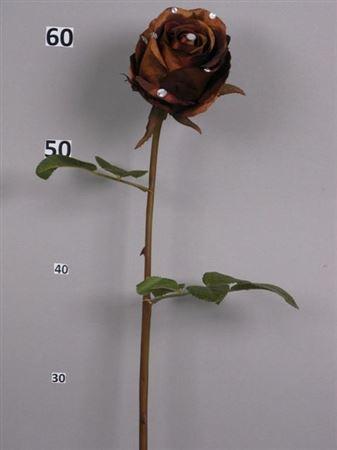 <h4>Flower Dana brown</h4>