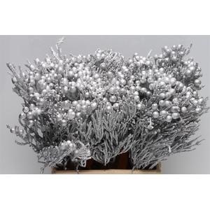 Kaaps Brunia Silver Zilver