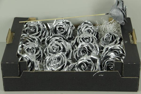 <h4>Wax Rose Silver</h4>