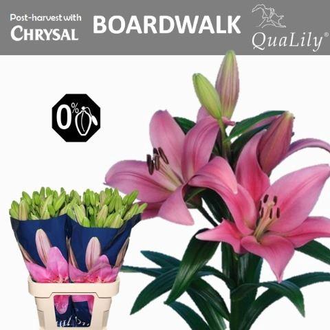 <h4>Li La Boardwalk</h4>