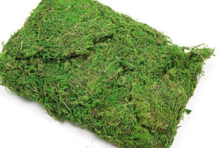 <h4>Basic Asia Moss 250gr</h4>