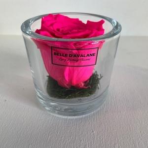 Cilinder d9x8h fuchsia roos