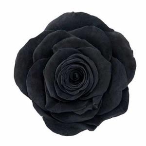 Rose Ava Black