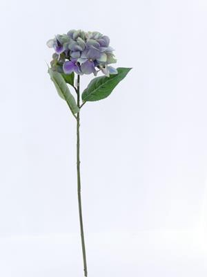 <h4>Af Hydrangea Single W/3 Lvs Pu</h4>