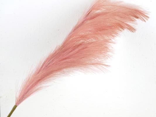 <h4>Af Pampas 130cm Pink</h4>