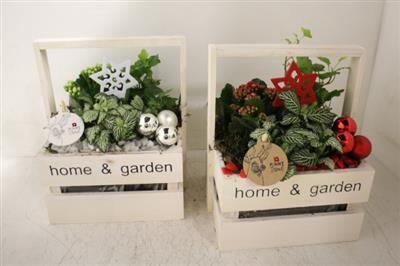 <h4>2022 Kist Home Garden</h4>