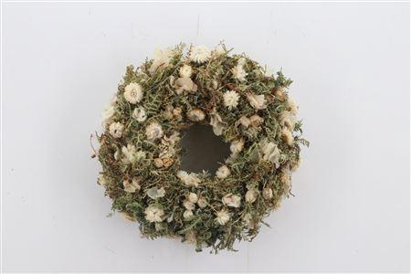 <h4>Wr White Sensation Natural 40cm</h4>