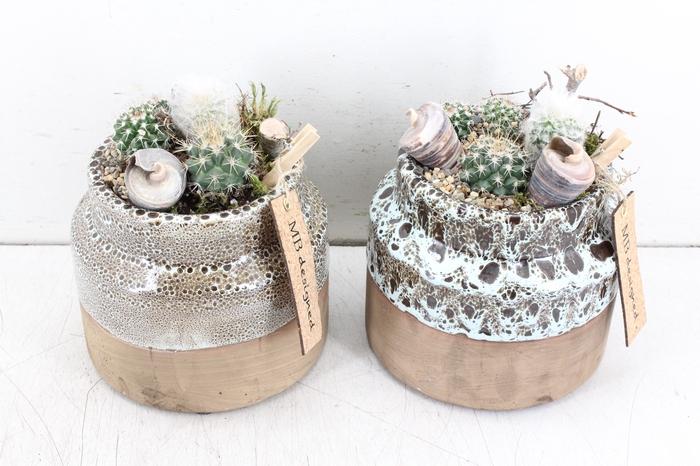 <h4>arr. MB Cactus - Candy pot M</h4>