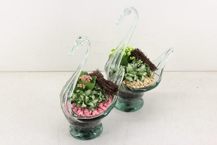 <h4>arr. TD114 Glazen zwaan - roze/wit</h4>