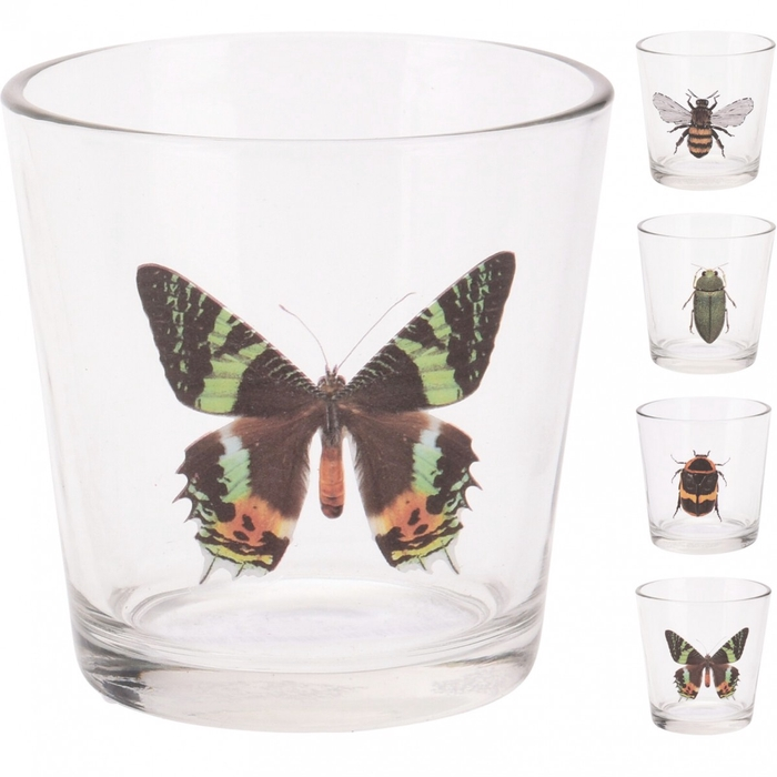 <h4>Theelichth. Glas insecten d08*8cm</h4>