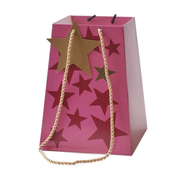 <h4>Christmas Bag Starbeat 11/11*15/15*20cm</h4>