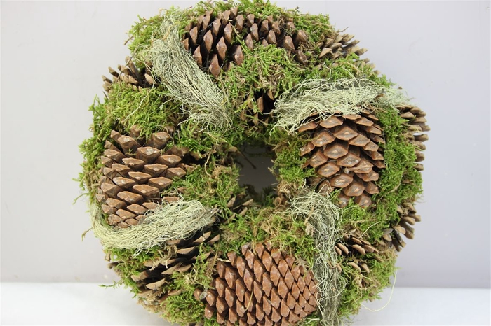 <h4>Krans Pine Hair Moss 25cm</h4>
