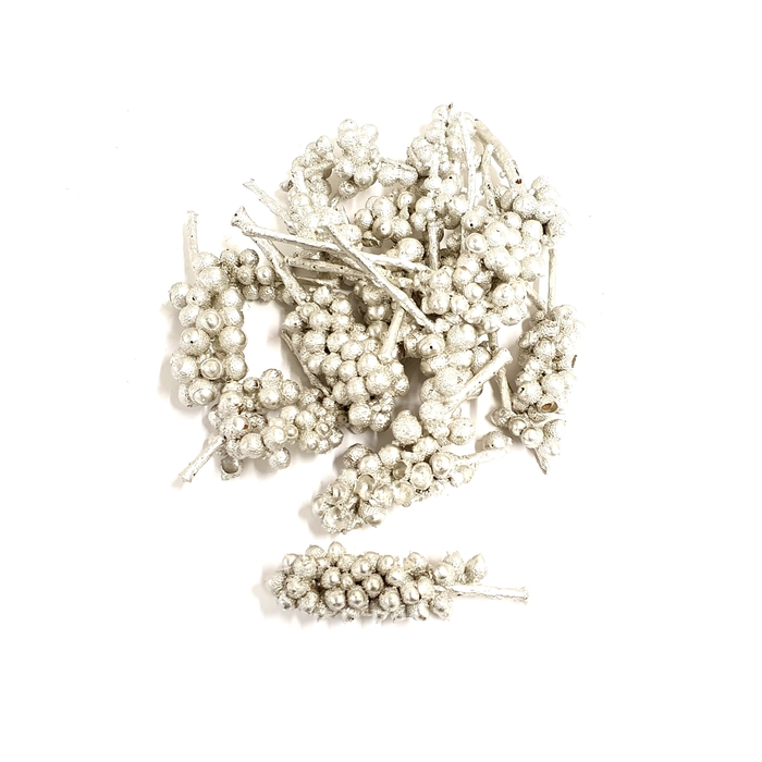 <h4>Acorn bunch 250gr in poly Platina</h4>