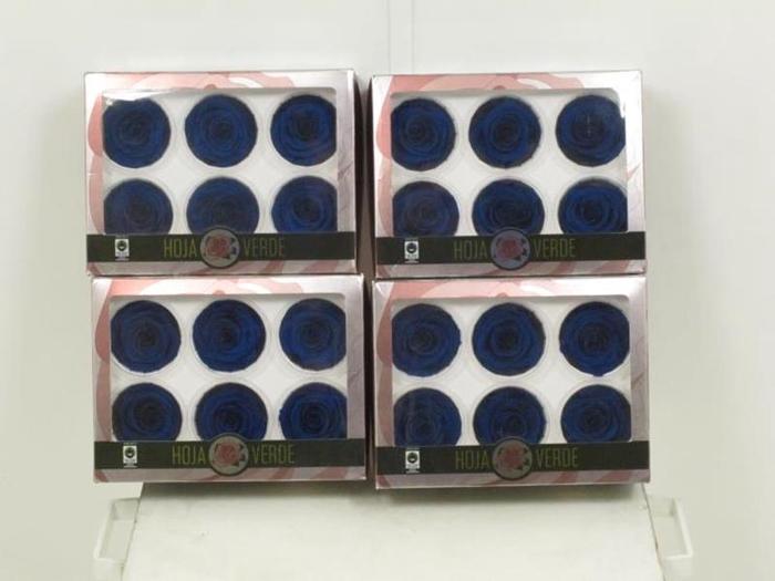 <h4>Prs Gr Preserved Roses Blue</h4>