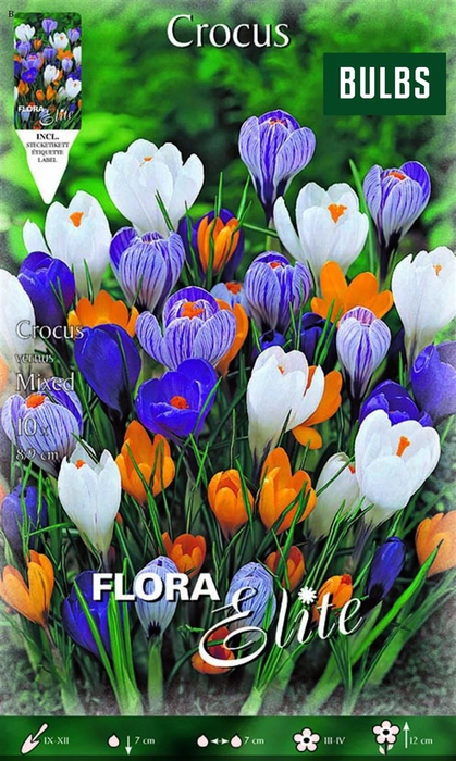 <h4>Z Crocus Vernus Mixed</h4>
