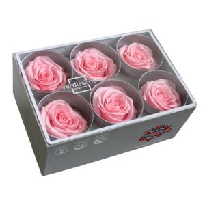 Roos standard roze
