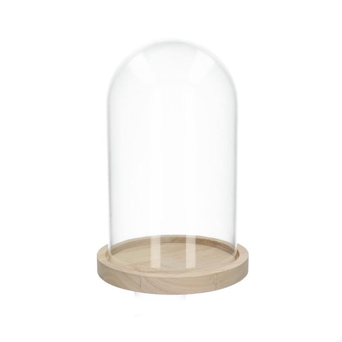 <h4>Glass Cloche+wood d14*21cm</h4>