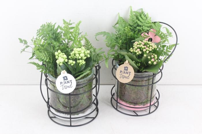 <h4>arr. PL - Glas pot ijzer - roze/wit</h4>