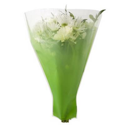 <h4>Housses 52x44x12cm OPP40 Usual vert</h4>