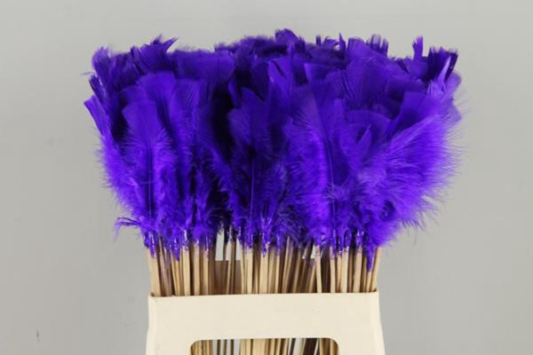<h4>Stick Feather Purple-blue</h4>