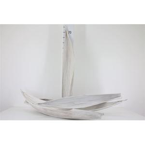 Maripa White Antique