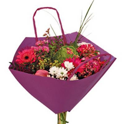 <h4>Bro-lux sac à bouquet 35x35cm papier violet + ance</h4>
