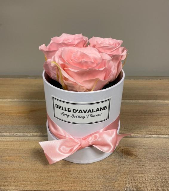 Box rd 10cm wit-roze
