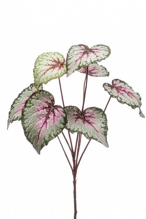 <h4>Silk Begonia leaves spray 60cm</h4>