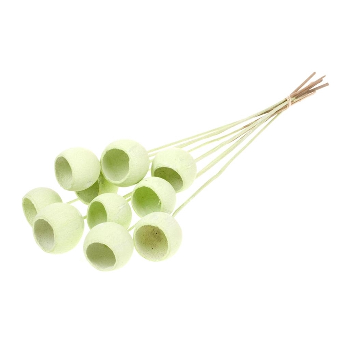 <h4>Bell cup o/s 10pc light green misty</h4>