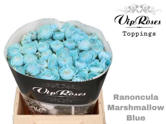 RAN OV MARSHMALLOW BLUE