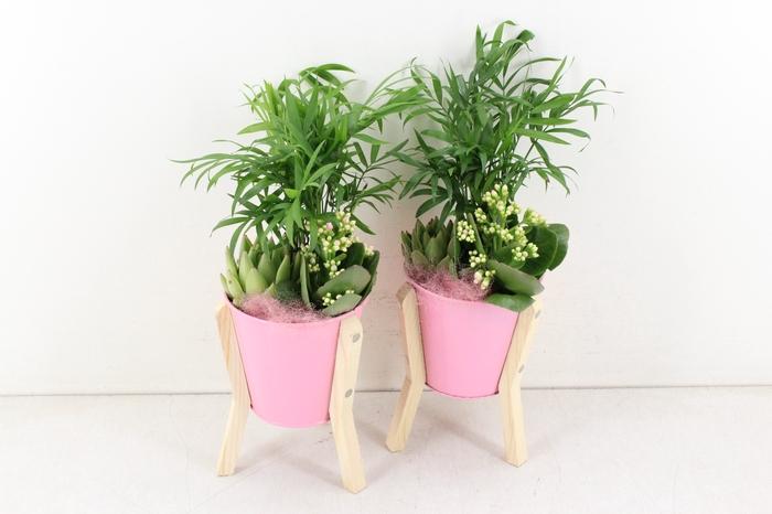 <h4>arr. LO - Zink op pootjes - roze</h4>
